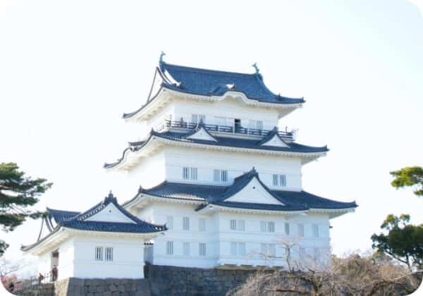 小田原観光旅行にカーシェアを利用 12時間の利用:7,150円